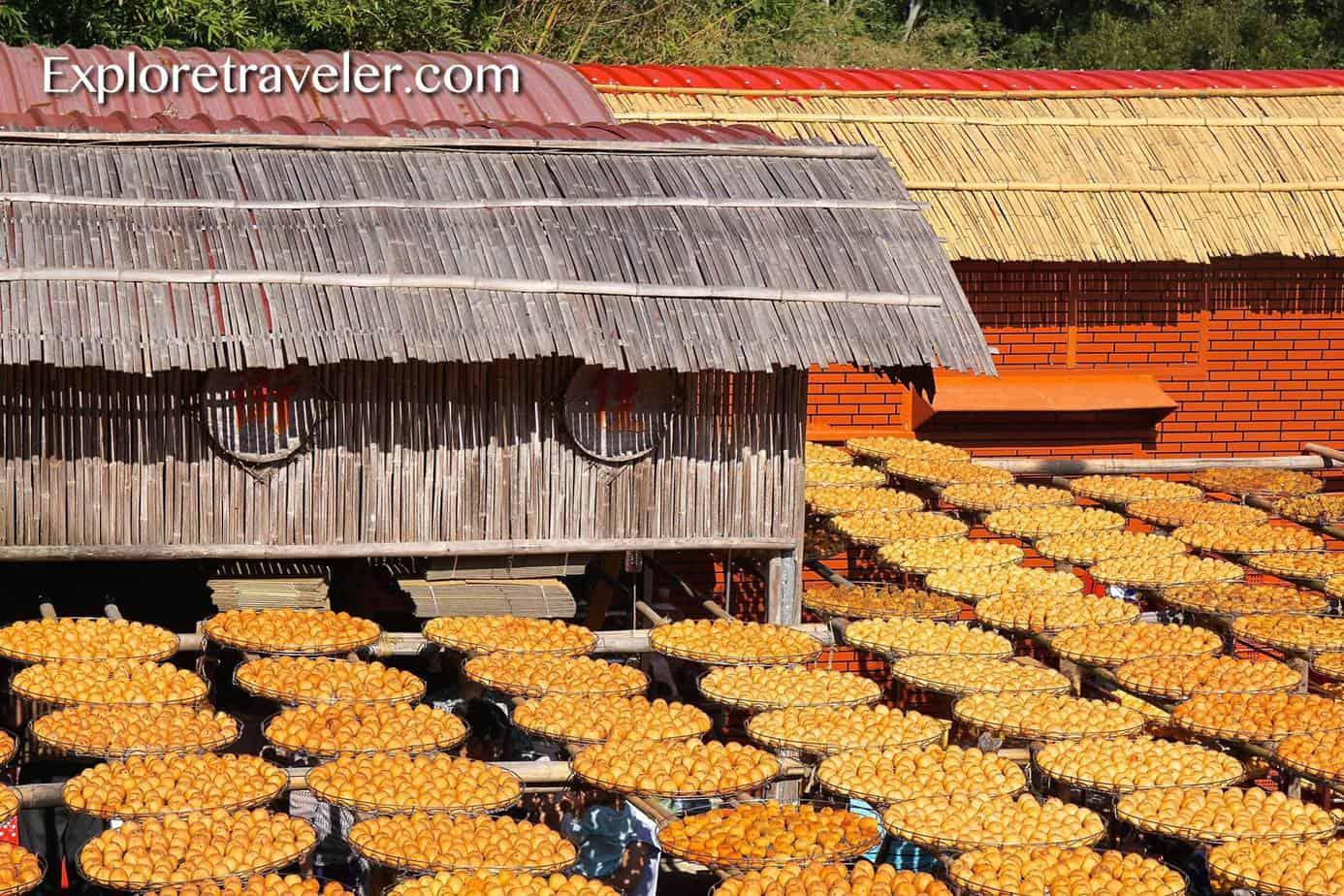 Persimmon Farm Trip