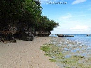 Olango Island Wildlife Sanctuary wetlands in the Philippines