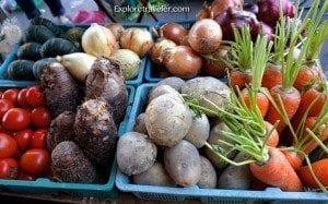 Bountiful fruit and vegetable gardens, loving springtime in Taiwan!