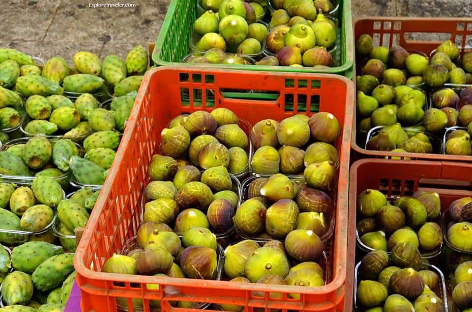 Prickly Pear Cactas