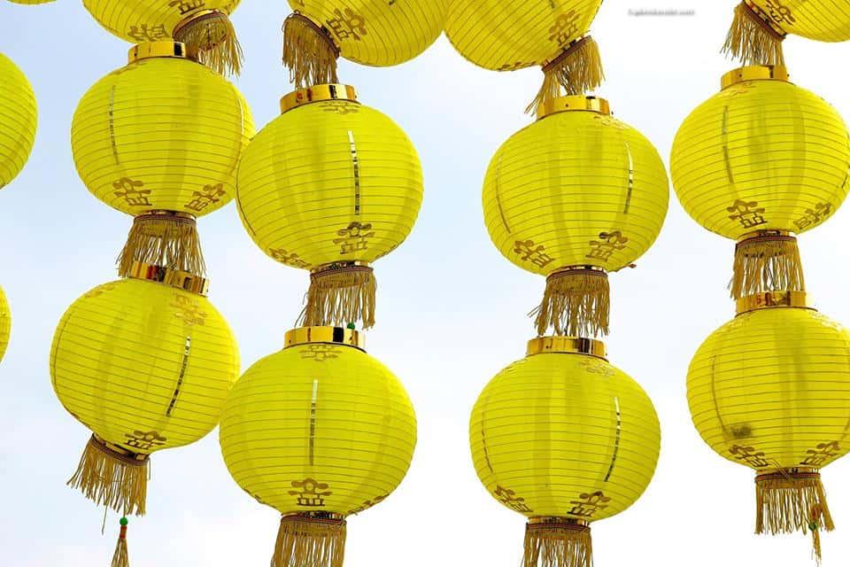 Happy Chinese New Year! 中国新年快乐