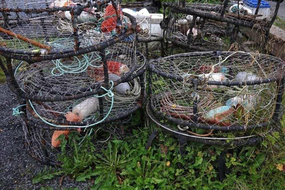 Alaska Marine Highway - Photo of the day ~ Dungeness Crab fishing