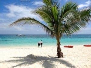 Isla ng Panaon: Southern Leyte, Pilipinas - A beach with a palm tree - Panaon Island