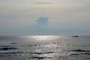 Bakasyon at Scuba Diving sa Coral Reefs ng Pilipinas - A body of water next to the ocean - Wind wave
