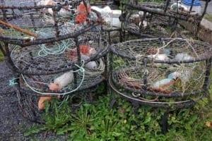The Amazing Fishing Village Of Saint Petersburg, Alaska - A pile of hay - Petersburg