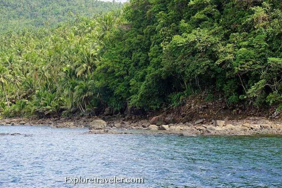 Sea Coral Gardens At Panaon Island