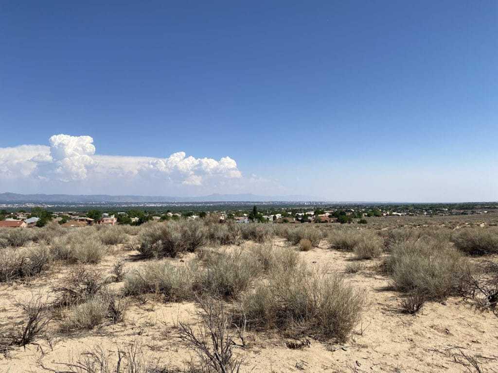 City view of Albuquerque, NM Hands and animals of Petroglyth Piedras Marcadas Canyon Trail